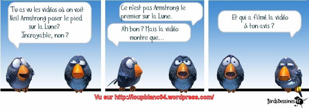 Birds 2013 de tout et de rien huhuhu bienvenue dans for Humour anglais