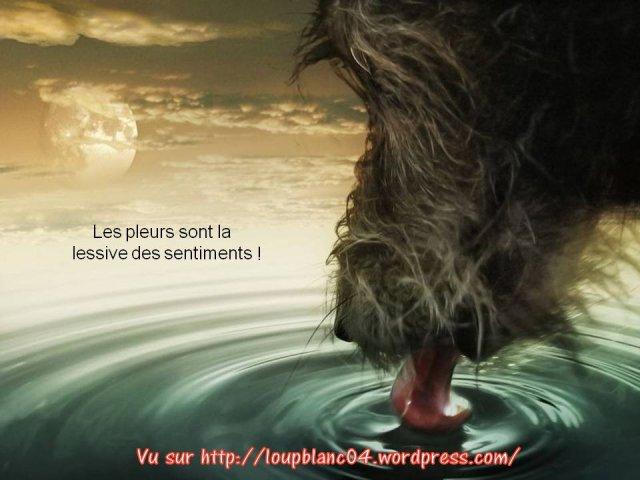 Crier la Vie_010