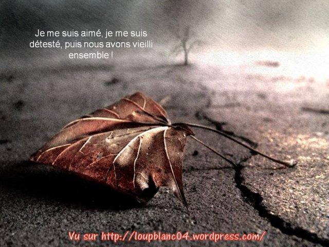 Crier la Vie_015