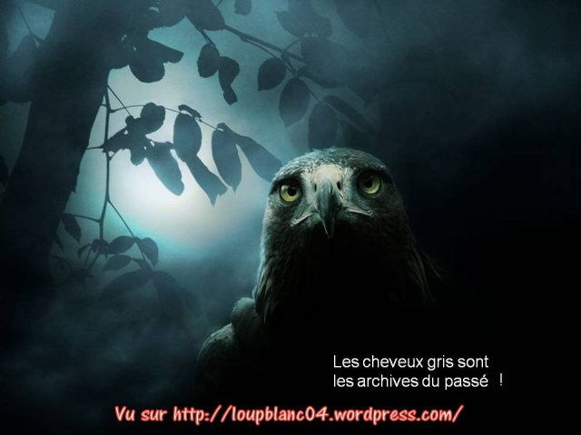 Crier la Vie_016