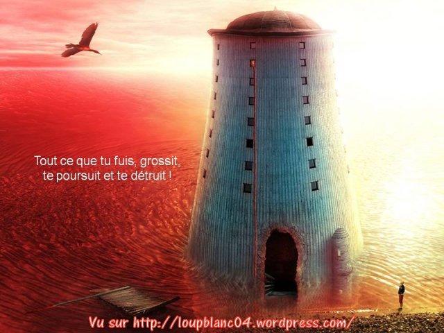 Crier la Vie_020