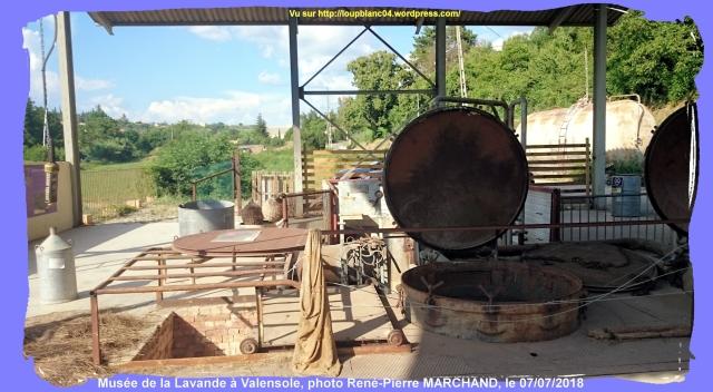 LB20180707-RPM_Lavandes-12_030