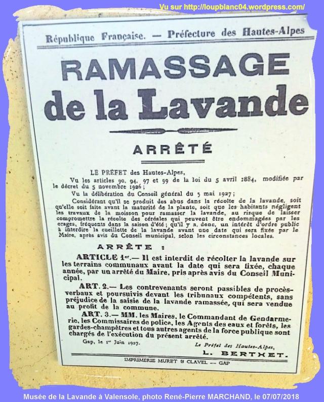 LB20180707-RPM_Lavandes-13_0310