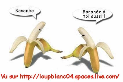 Voeux_Bananée